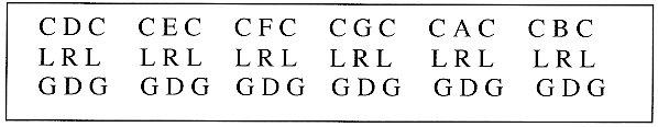 P64 decoupage lingual2